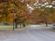 Norris TN is noted for its urban design and open spaces